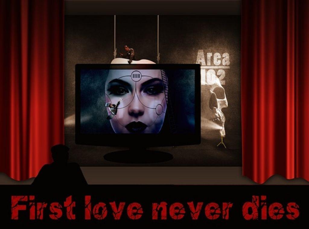 ביקורת תיאטרון - אהבה ממבט ראשון